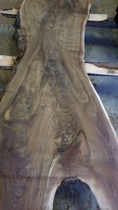 Live Edge Black Walnut Tree